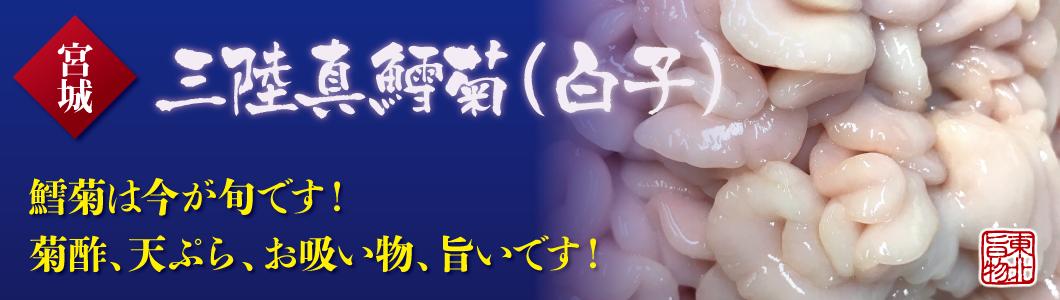 三陸真鱈菊(白子)