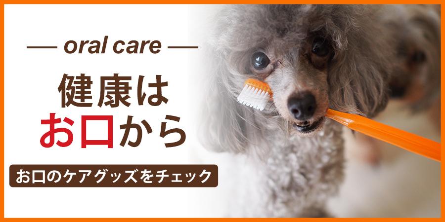 療法食 犬用