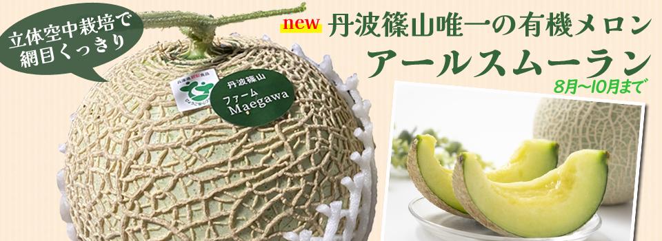 採れたて野菜セットキャンペーン