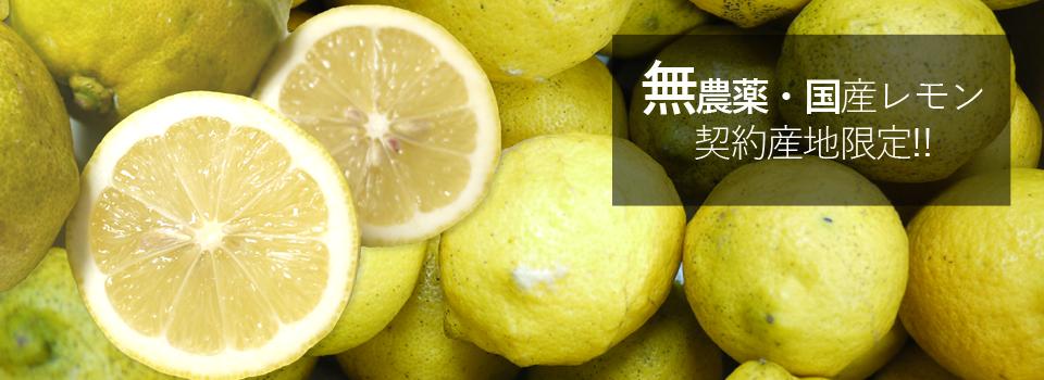 国産レモン(無農薬・有機栽培同等品)